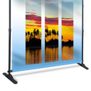 Banner Stand — Backdrop